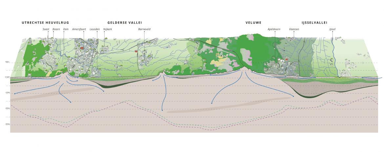Doorsnede Utrechtse Heuvelrug, Gelderse Vallei, Veluwe en IJsselvallei.
