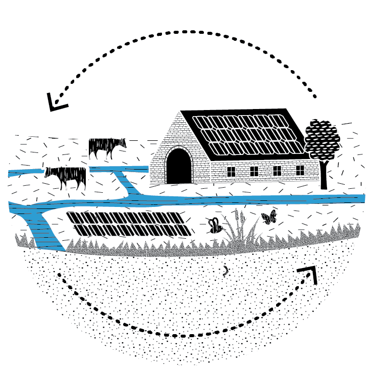 afbeelding Natuurinclusieve kringlooplandbouw